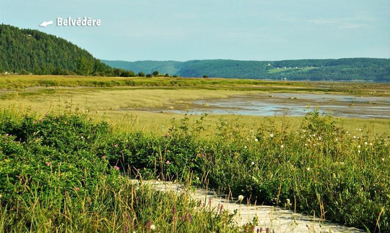 fjord battures st fulgence ©StephaneMorvan Le Baroudeur